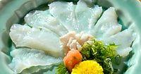 37)淡路島・とらふぐ:ぶ厚いてっさ。絶品の歯ごたえとうまみだ=兵庫県南あわじ市の松葉寿司