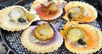 44)隠岐のヒオウギ貝:焼かれるヒオウギ貝。殻の裏からでも、紫や赤、黄など貝の色がわかる=島根県海士町