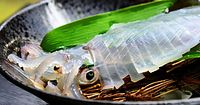 62)香住の白イカ:活イカの姿づくり。塩をひとつまみかけると、イカが足を持ち上げた=兵庫県香美町