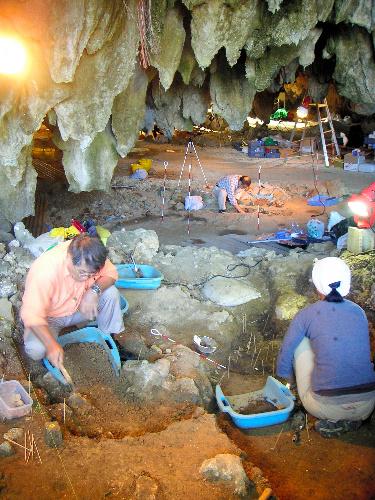 写真:古い縄文人の骨を求めて調査が続く武芸洞=沖縄県南城市