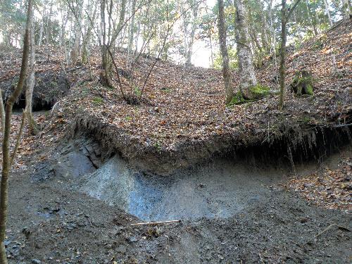 写真:新たに発見された中央構造線の程野露頭。中央部に縦の断層線が走っている=昨年11月、飯田市上村程野、飯田市美術博物館提供