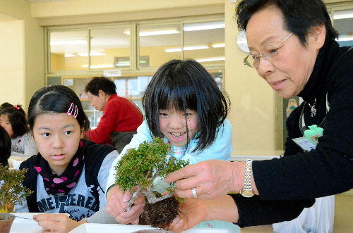 盆栽、若者も育成中 埼玉の観光協会、無料アプリ開発