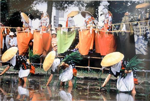 東北6県の祭り、撮り集めた 福島で展示