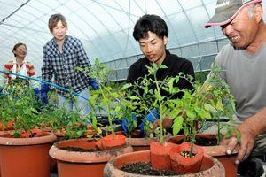 写真:農場で野菜作りを体験する梶岡洋佑さん(右から2人目)=瀬戸内市長船町西須恵
