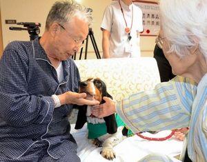 写真:セラピードッグをなでて笑顔を浮かべる患者たち=岩国市