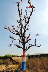 木全体がフランス国旗=19日、バマコ郊外