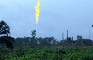油田地帯をともす炎=いずれも8日、中野智明氏撮影