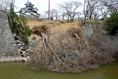 写真:国史跡・小峰城跡の竹之丸の石垣。東日本大震災で崩落した=福島県白河市教委提供