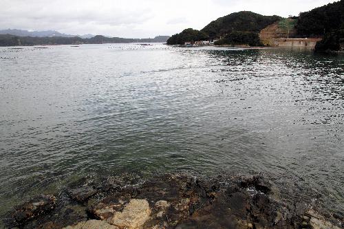 写真:「くじら牧場」が構想されている森浦湾=和歌山県太地町