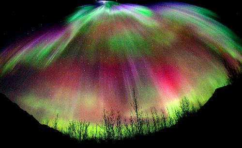 写真:アラスカ北部のワイズマンで12日、夜空に輝くオーロラ=中垣哲也さん撮影