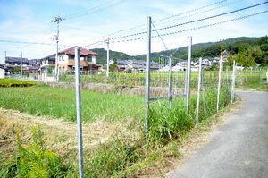写真:奈良公園の南約500メートルの田畑では、鹿が農作物を食い荒らさないようにステンレス製の柵や扉が厳重に取り囲んでいる=奈良市白毫寺町