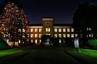 津田塾大学の象徴でもある「ハーツホン・ホール」の写真です。冬のイルミネーションがきれいです。