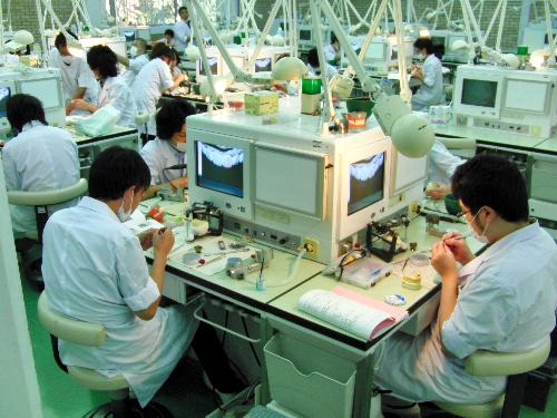 写真:松本歯科大:歯学部の実習授業=長野県塩尻市の松本歯科大
