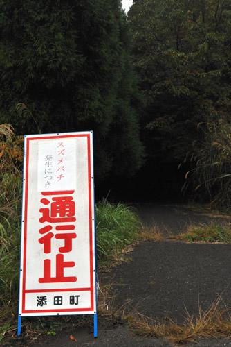 写真:児童たちが襲われた現場付近は通行止めになった=添田町英彦山