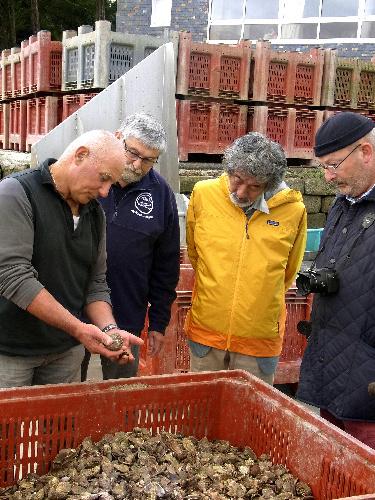 写真:ルイ・ヴィトンのパトリック5代目当主(右)と共にブルターニュのカキ養殖場を視察する畠山氏(右から2人目)