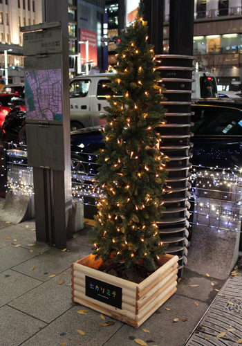 写真:ところどころにクリスマスらしい演出も