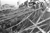 新婚さんを満載して神戸・中突堤を出港する関西汽船の「すみれ丸」=1964年3月12日。春を迎えて関西汽船の別府航路が新婚さんであふれている。