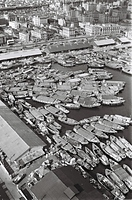 神戸港の中央突堤とメリケン波止場にはさまれた一角に、はしけが密集して停泊している=1964年