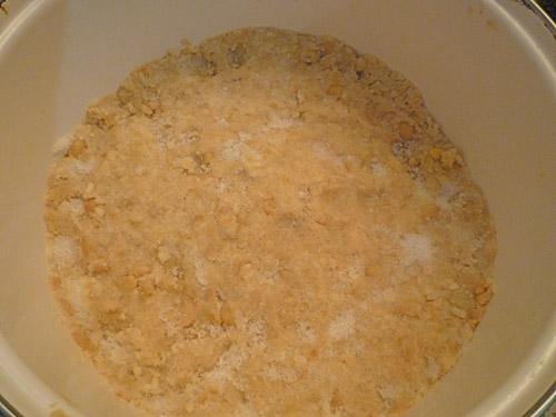 写真:熱湯消毒をした容器にならして入れ、薄く塩で蓋をする。仕込み完了!