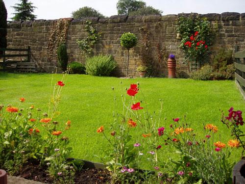 写真:わが家の夏の庭。両端に見えているのが隣家との低い板塀