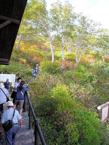 写真:木々が色づき始めた黒岳の七合目=北海道上川町、小川雪撮影