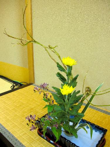 写真:対局室の床の間にいけられた秋の花=宮崎市、小川雪撮影