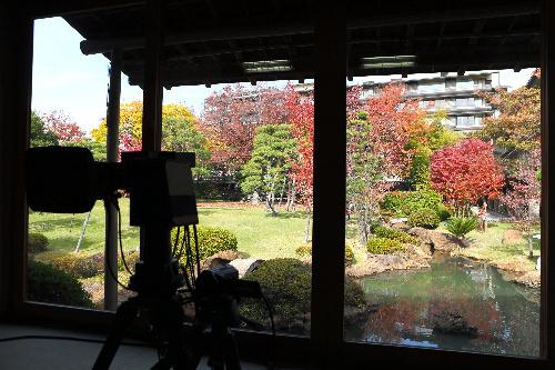 写真:対局室から見える常磐ホテルの庭園=13日午後、甲府市、長島一浩撮影