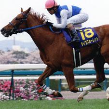 ダイワスカーレットこそ史上最強牝馬