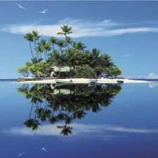 『亀仙人』の島、泊まれます