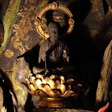 廬山寺ルポ おみくじの開祖に出会い、気が引き締まる