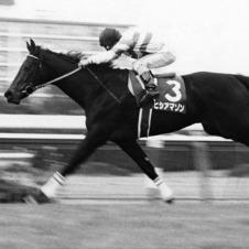 牝馬の最多勝記録をもつヒシアマゾン