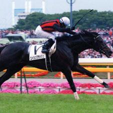「競馬史に残る美しいシーン」エイシンフラッシュ