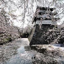 <第21回>桜咲く城下町へ