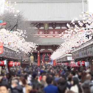 春の東京、下町歩き  半日散歩のすすめ