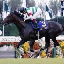 世界競走馬ランキング2位になったエピファネイア