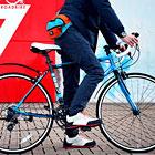折り畳みロードバイクで電車+自転車旅
