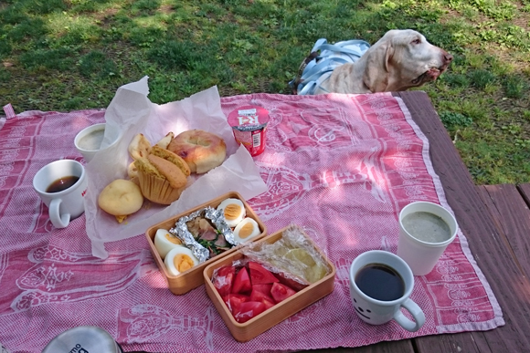 おっさんの早朝ピクニックは「曲げわっぱ」の弁当箱で