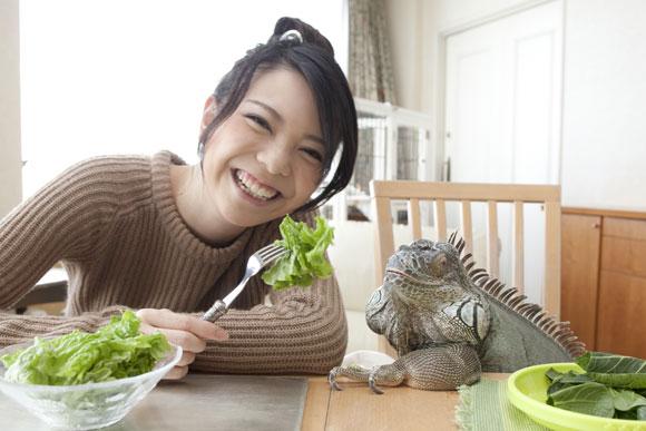 イグアナと家族とひだまりと-iguana Goooo-
