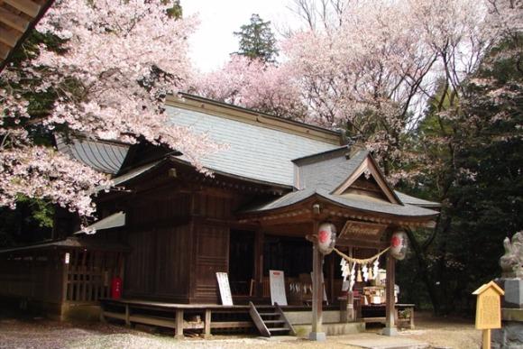 <第33回>西の吉野と並び称された桜の隠れ里、桜川