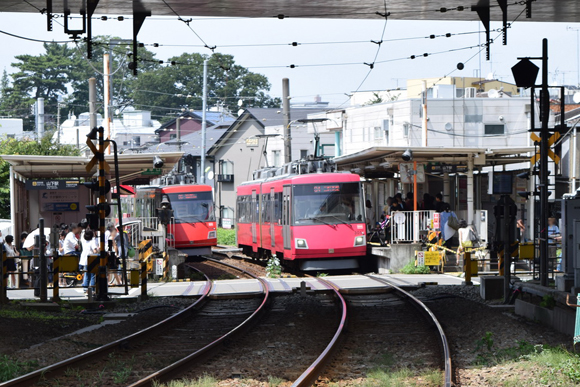 豪徳寺・山下駅 小田急線と世田谷線の交差が織りなす風情