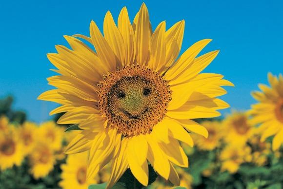 笑う門には「人」来たる、笑顔の粋人
