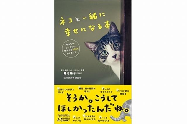 ネコとの暮らし、酸いも甘いも 気になるポイントを徹底解説