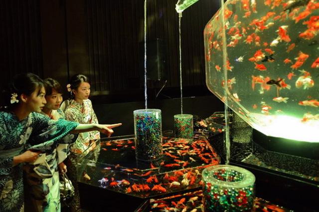 金魚の幻想空間で江戸の涼 10周年の「アートアクアリウム」