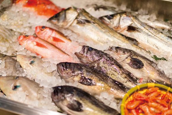 今、魚屋が面白い。「サカナバッカ」のマニアックな魚たち