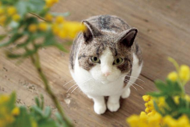 『FELT CATS』