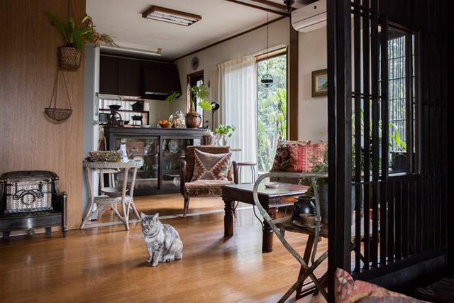 〈猫と暮らすインテリア〉gigi & 早乙女邸(4)