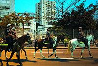 マラカナン競技場付近では、騎馬による警備も見られた=5日、ブラジル・リオデジャネイロ、竹花徹朗撮影