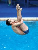 男子3メートル板飛び込みで予選敗退した坂井丞=西畑志朗撮影