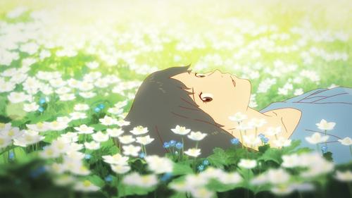 花の表情と白い花