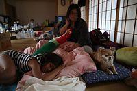 公民館にイヌと一緒に避難する人もいた。15日夜は、イヌを自宅に残してきたが、16日未明の「本震」で自宅は全壊した。家ではよくほえる犬が、避難所では静かに過ごしているという。「怖い思いさせてごめん」と飼
